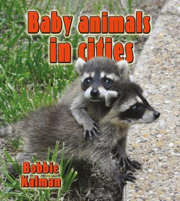 Baby Animals in Cities By Kalman, Bobbie